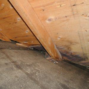 Inspection des greniers : Ce que vous devez savoir